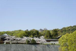 愛媛県松山市で交通事故対応ができる整骨院10選